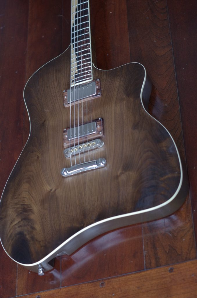 Custom guitar builder,Electric guitar repairs near me